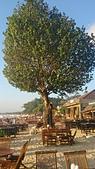 20140808-峇里島:Bali_015.JPG