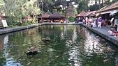 20140808-峇里島:Bali_154.JPG