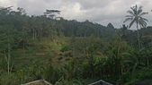 20140808-峇里島:Bali_159.JPG