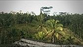 20140808-峇里島:Bali_173.JPG