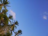 20140808-峇里島:Bali_005.JPG