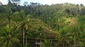 20140808-峇里島:Bali_167.JPG