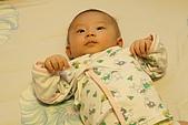 熊妹妹2-3個月:IMG_9022.JPG