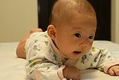熊妹妹2-3個月:IMG_9038.JPG