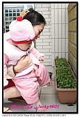 熊妹妹10-11個月:IMG_2503.jpg