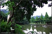 2008.06.08 新竹湖口老街&九芎湖:IMGP7652.jpg