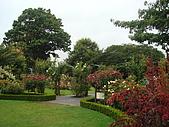 紐西蘭風景篇:Rose garden2.JPG
