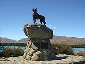 紐西蘭風景篇:Tekapo湖畔忠狗紀念.JPG