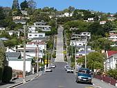 紐西蘭風景篇:世界上最陡的街道-Baldwin 街.JPG