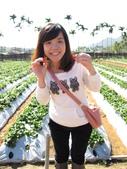"""2012.1.27 大湖草莓&巧克力雲莊:草莓""""鮮""""子就是偶"""