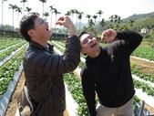 2012.1.27 大湖草莓&巧克力雲莊:別人表演吞劍、我們哥倆好表演吞草莓(弱)