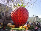 2012.1.27 大湖草莓&巧克力雲莊:這回多了這顆大草莓