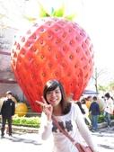 2012.1.27 大湖草莓&巧克力雲莊:偶要吃下你~YA