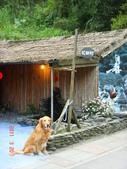 宜蘭花田村201103:DSC07024.JPG