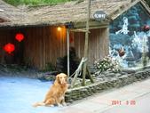 宜蘭花田村201103:DSC07025.JPG