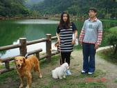 宜蘭花田村201103:DSC07011.JPG