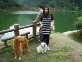 宜蘭花田村201103:DSC07012.JPG