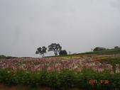 2011拉拉山2日遊:20110430拉拉山2日遊 052.jpg
