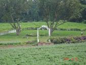 2011拉拉山2日遊:20110430拉拉山2日遊 016.jpg