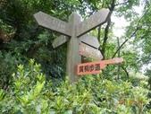 110824記錄我家後花園系列四:火焰山_承天禪寺:照片 102.jpg