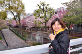 2013-04京阪奈花見DAY1:DSC_8276-2_調整大小D7.jpg