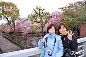 2013-04京阪奈花見DAY1:DSC_8273-2_調整大小D7.jpg