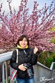 2013-04京阪奈花見DAY1:DSC_8256-2_調整大小D7.jpg