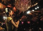 2012 表演:Shiva Indian Dance 西瓦-Bollywood Night