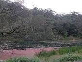 2010-12-19 福山植物園:PC190117