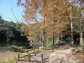 2010-12-19 福山植物園:PC190062