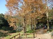 2010-12-19 福山植物園:PC190063