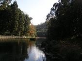 2010-12-19 福山植物園:PC190070