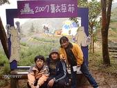 2007.01 新社薰衣草森林:新社薰衣草2007