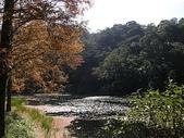 2010-12-19 福山植物園:PC190065