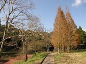 2010-12-19 福山植物園:PC190061