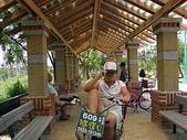 2007.07 后里:東豐綠廊-大榕樹