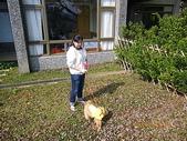 2011-03-12 南庄富泰會館:2010-03-12 富泰會館12.JPG