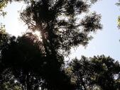 2007.07 五峰山上人家/內灣:山上人家-鵝公髻山