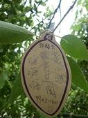 2010-03 薰衣草森林明德店:2010-03-06 薰衣草明德店 22