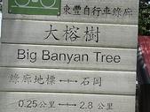 2007.07 后里:東豐綠廊