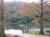 2010-12-19 福山植物園:PC190106