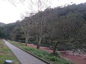 2010-12-19 福山植物園:PC190108