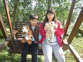 2011-03-12 南庄富泰會館:2010-03-12 富泰會館18.JPG