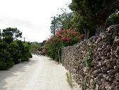 石恒島day-2:P1010930.jpg