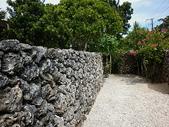 石恒島day-2:P1010927.jpg