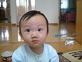 肥ㄗㄗ(1歲):好大的眼睛