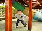 肥ㄗㄗ(3歲):0305生活照-7