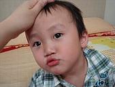 肥ㄗㄗ(2歲):喜歡馬麻ㄙㄡ頭頭