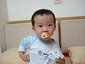 肥ㄗㄗ(2歲):怎樣!是我的