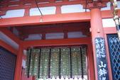 20110716京都D7-八坂神社宵山:110716京都0215.jpg